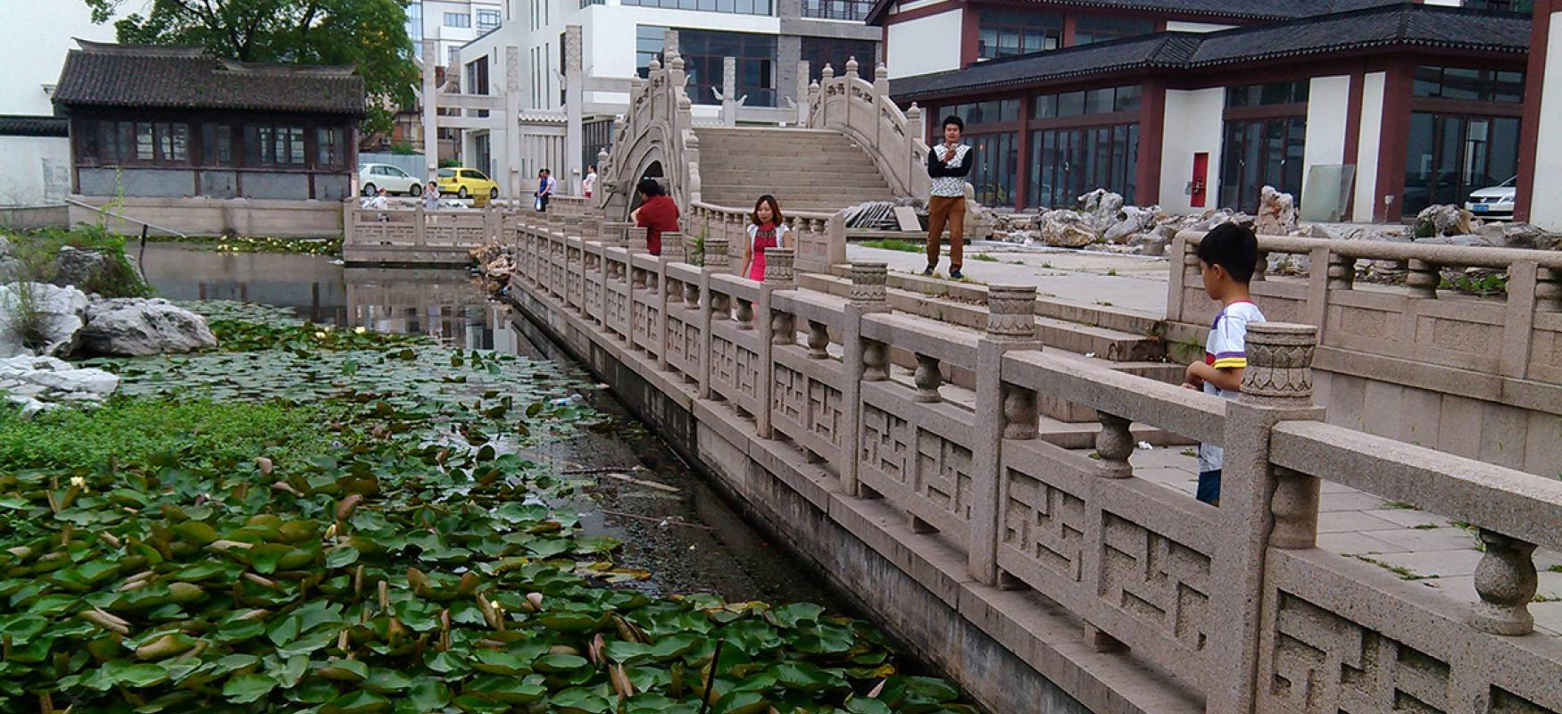 Some children and one adult look at green plants in the river in Changshu, China.